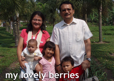 my-lovely-berries2
